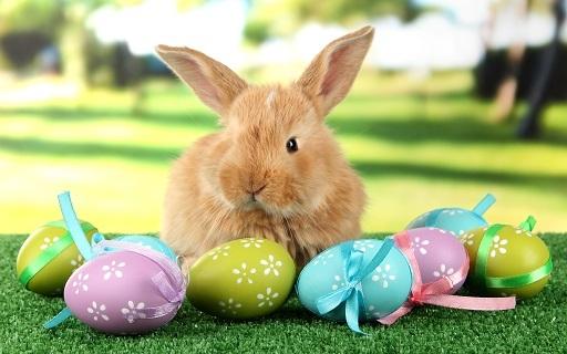 Húsvéti programok gyereknek-felnőtteknek